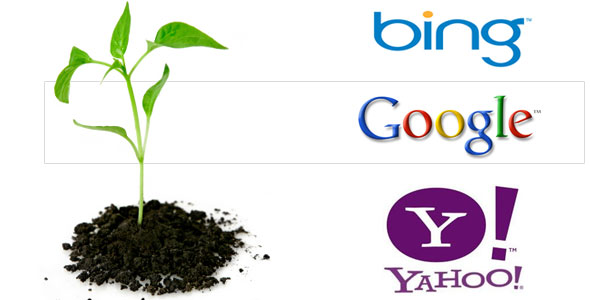 Organic Search result in Search engine optimization